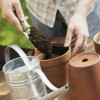Pots, Potting Mixes and Fertilizer by Orchid Type