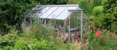 Greenhouse Covers for Orchids