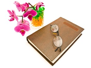growing-orchids-beginners
