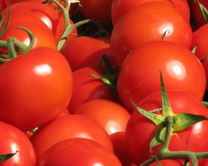 Shortage of Tomatoes in the Middle East