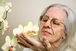 Grandmother with Orchid